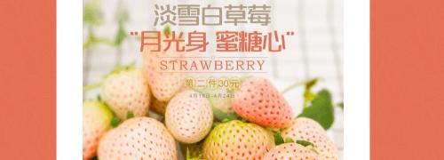 淡雪白草莓第2件30元