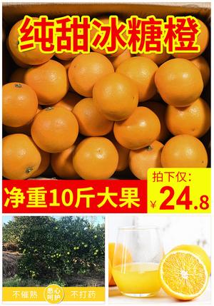 橙甄哆 麻阳冰糖橙 10斤 果径60mm以下