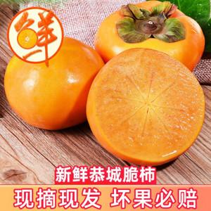 移动端:广西桂林恭城脆柿甜柿子脆皮硬柿子整箱带箱5斤
