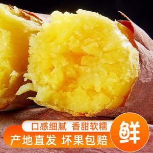 陕西现挖沙地新鲜板栗红薯10斤小番薯糖心蜜薯农家地瓜黄心香烤薯生鲜坏果包赔带箱 5斤装